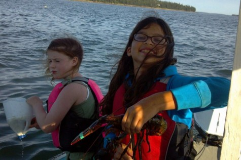 Lobstering is great activity for kids of all ages