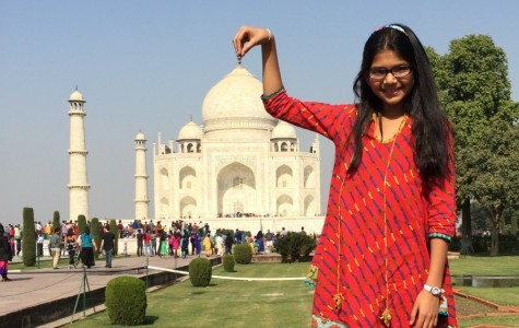 The Taj Mahal is loaded with interesting history, beauty and fine architectural details