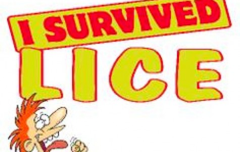 Kids sent home due to head lice; policy of instant dismissal debated by medical experts