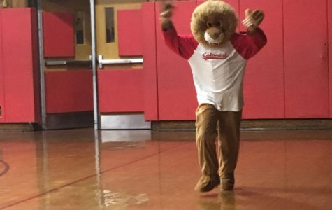 Colonial gains real mascot with Charlie the Cougar costume
