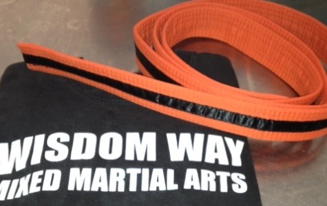 Wisdom Way kicks its way to the top with lessons in martial arts for kids of all ages