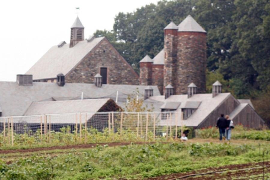Fifth graders learn about healthy farming and living during Stone Barns trip