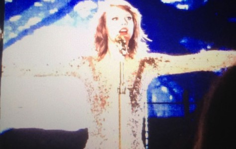 Pelham residents shake it off with Taylor Swift during MetLife show