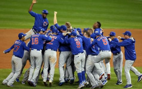 Cubs Win World Series!